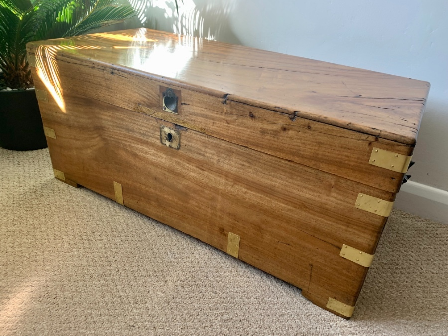 Antique Camphor Wood Military Campaign Chest circa 1840