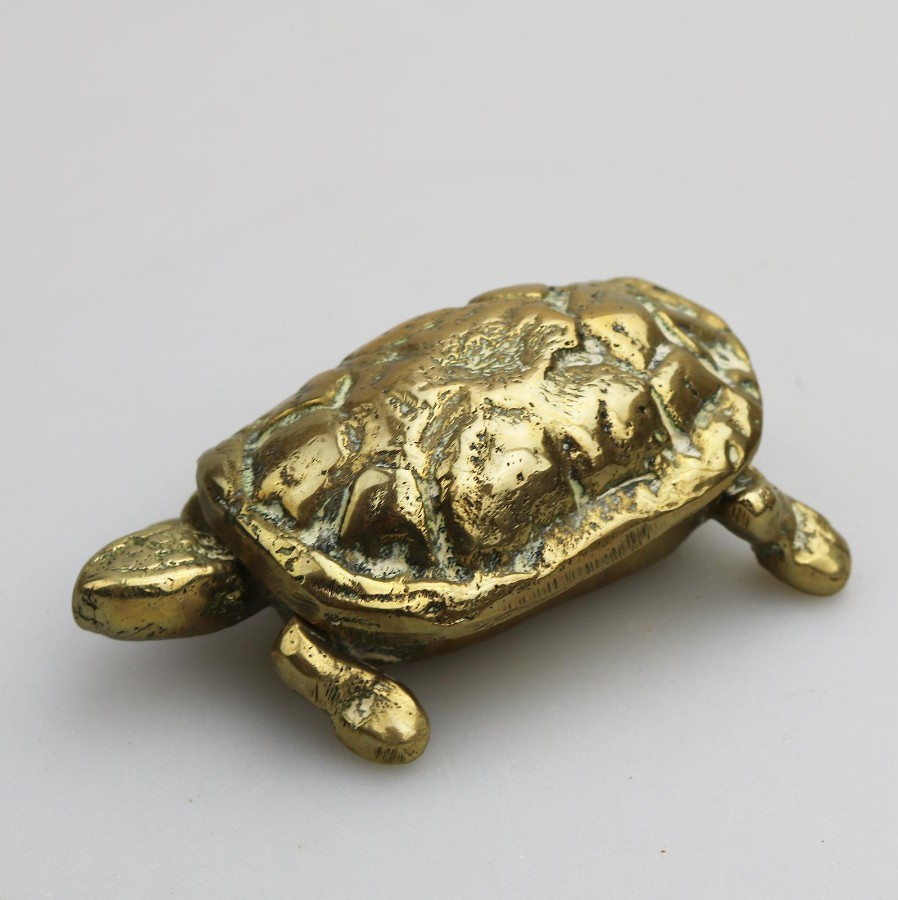 Antique Metalware : A novelty brass Tortoise Box / Fireside Striker - Early 20th century
