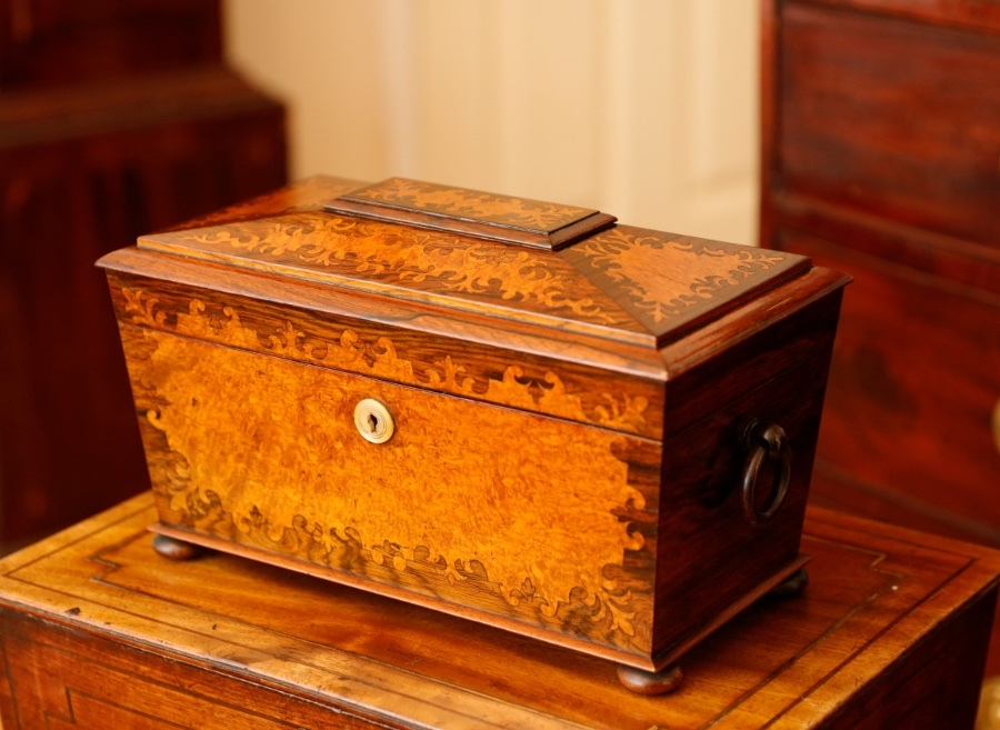 Antique English Regency Marquetry tea caddy