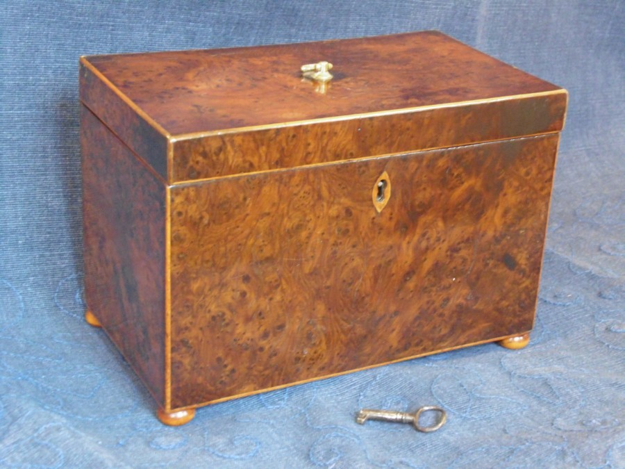 Burr Yew Tea Caddy