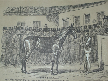 Cuthbert Bradley antique print circa 1893 The brothers Peat's polo ponies at Tattersalls professionally mounted