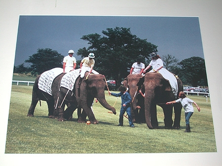 Mike Roberts English 20th century Elephant Polo Berkshire Polo Club Limited edition photograph nu...