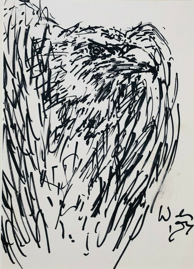 Michael Werner (1912-1989), Pen & Ink, Bird