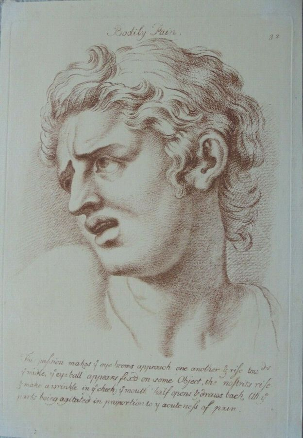 Antique 'Bodily Pain ' from Le Brun,  Passions of the soul (Plate 32)
